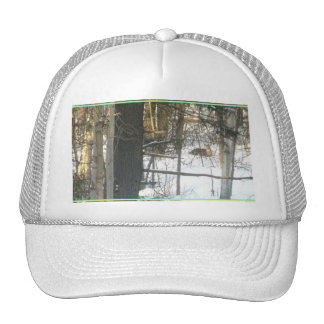 ℑм℘ґℯṧṧї♥℮ trucker hat