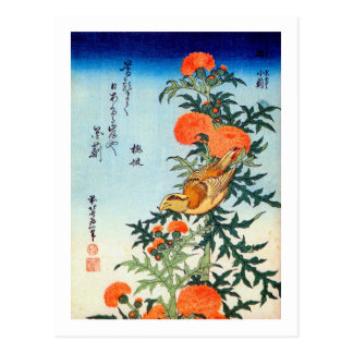 アザミに小鳥, 北斎 Bird and Thistle, Hokusai, Ukiyo-e Postcard