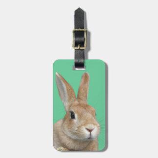 ウサギ 荷物用名前タグ