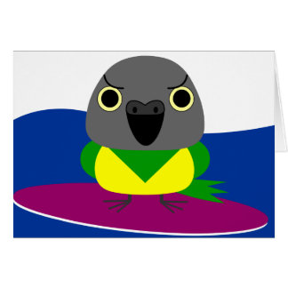オウム パロット Senegal parrot Surfing Card