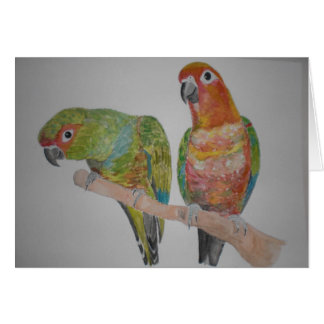 オウム パロットConure pair hanging out Card