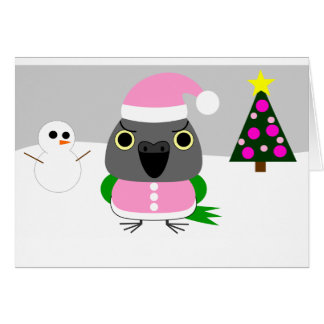 オウム パロットSenegal parrot as Santa for Christmas Card