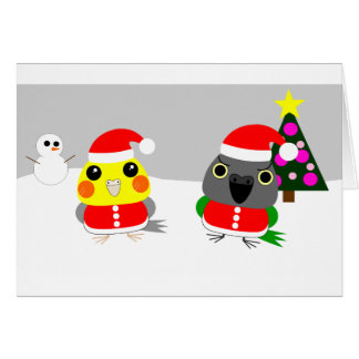オウム Cockatiel & Senegal parrot as Santa for Christ Card