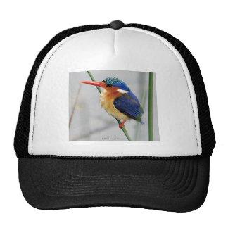 カワセミ トラッカーハット メッシュ帽子