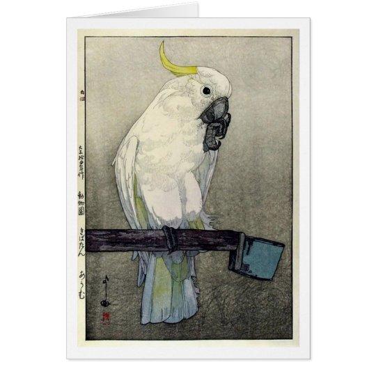キバタン・オウム, Sulphur-crested cockatoo, Yoshida Card