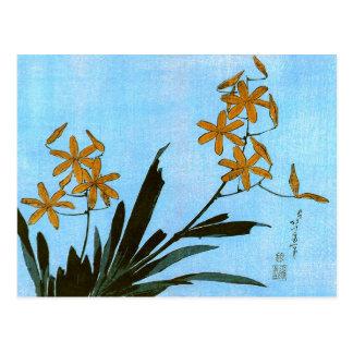 ヒオウギ(檜扇)Blackberry Lily 葛飾北斎 Katsushika Hokusai Post Card