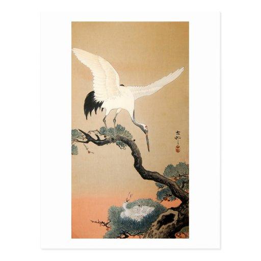 松に鶴, 古邨 Crane on Pine Tree, Koson, Ukiyo-e Postcards