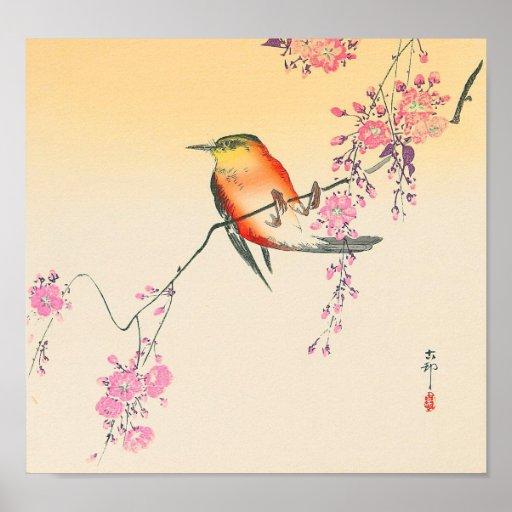 桜に鳥, 小原古邨 Bird & Cherry Blossoms, Ohara Koson