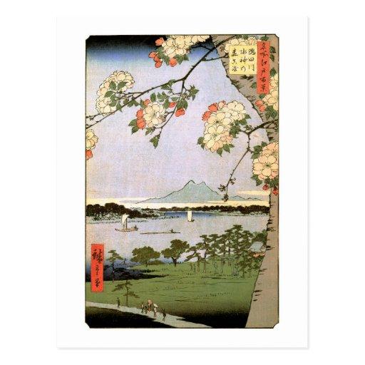 江戸の桜, 広重 Cherry Blossoms of Edo, Hiroshige Postcard