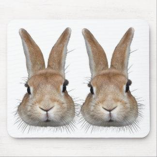 濃い髭を持つウサギ マウスパッド