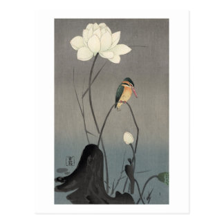 蓮にカワセミ, 古邨 Kingfisher on Lotus, Koson, Ukiyo-e Postcard