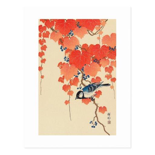 赤い蔦に鳥, 古邨 Bird on Red Ivy, Koson, Ukiyo-e Postcard