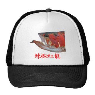辣椒紅龍 メッシュ帽子
