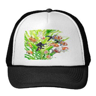 金魚 優良製品 帽子