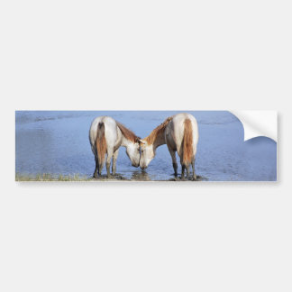 001) HORSES IN LOVE BUMPER STICKER
