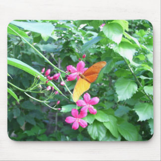 003 Butterfly on flower Mouse Pads
