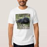 008Bearcat-edt Tshirts