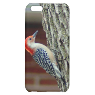 012510-6-APO COVER FOR iPhone 5C