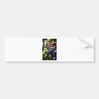 012 copy.jpg bumper stickers