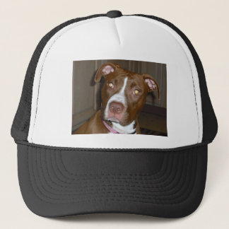 019 (1) perfect puppy pic of Brandy Trucker Hat