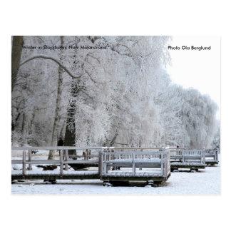 01.  Winter in Stockholm. Norr Mälars... Postcard