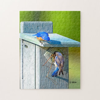 020 Bluebird Nesting 11x14 Puzzle 252 Pieces