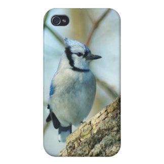 021910-167-APO iPhone 4 CASES