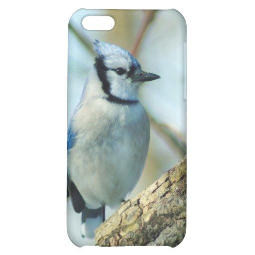021910-167-APO CASE FOR iPhone 5C