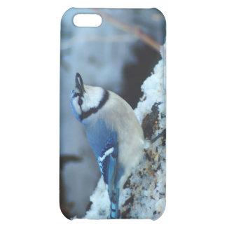 021910-173-APO iPhone 5C COVER