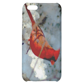 021910-179-APO COVER FOR iPhone 5C