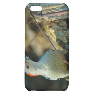 021910-190-APO iPhone 5C CASES