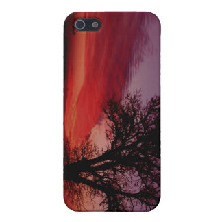 022107-1-APO CASE FOR iPhone 5