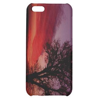 022107-1-APO iPhone 5C CASES