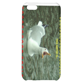 022310-76-APO iPhone 5C CASES