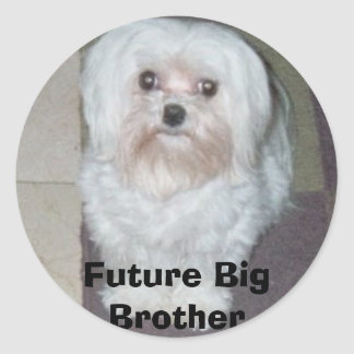 026_00A, Future Big Brother Classic Round Sticker