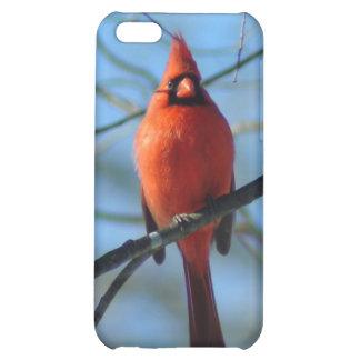 030110-9-APO CASE FOR iPhone 5C
