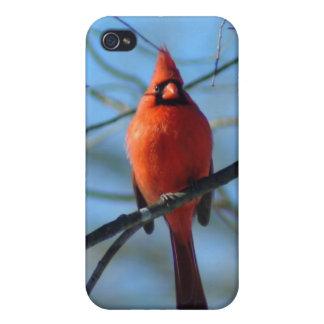 030110-9-APO iPhone 4/4S CASES