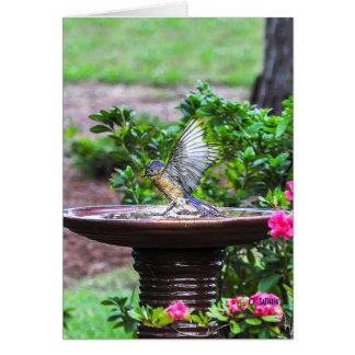030 Bluebird Bath Note Card 4.25x5.5 Matte