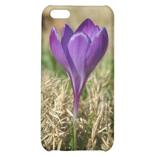 032011-59-APO iPhone 5C CASES