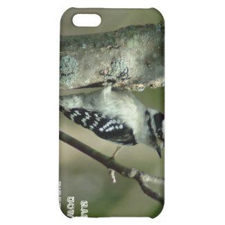 032609-4-APO iPhone 5C COVERS