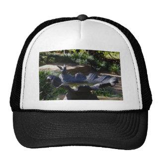 037 copy.jpg hat