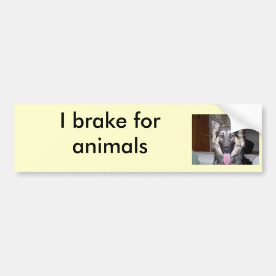 038, I brake for animals Bumper Sticker