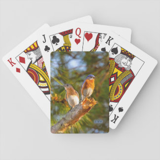 040 Bluebird Courtship Playing Cards