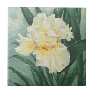 0434 Cream Iris Small Square Tile