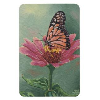 0465 Monarch Butterfly on Zinnia Rectangular Photo Magnet
