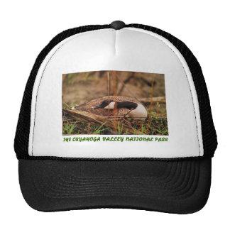 070406-38H CAP