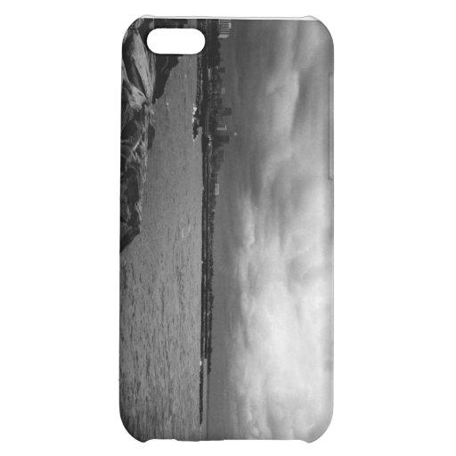 080806-32BW-APO CASE FOR iPhone 5C