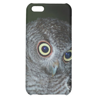 081609-21-APO COVER FOR iPhone 5C