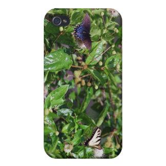 091707-1-APO   NEIGHBORS iPhone 4 CASE