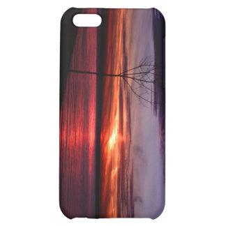091808-1-APO iPhone 5C CASES